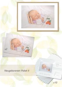 Inga Prasse Paket 2 Neugeborene Gemälde