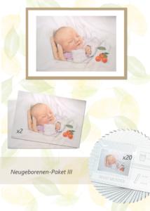 Inga Prasse Paket 3 Neugeborene Gemälde
