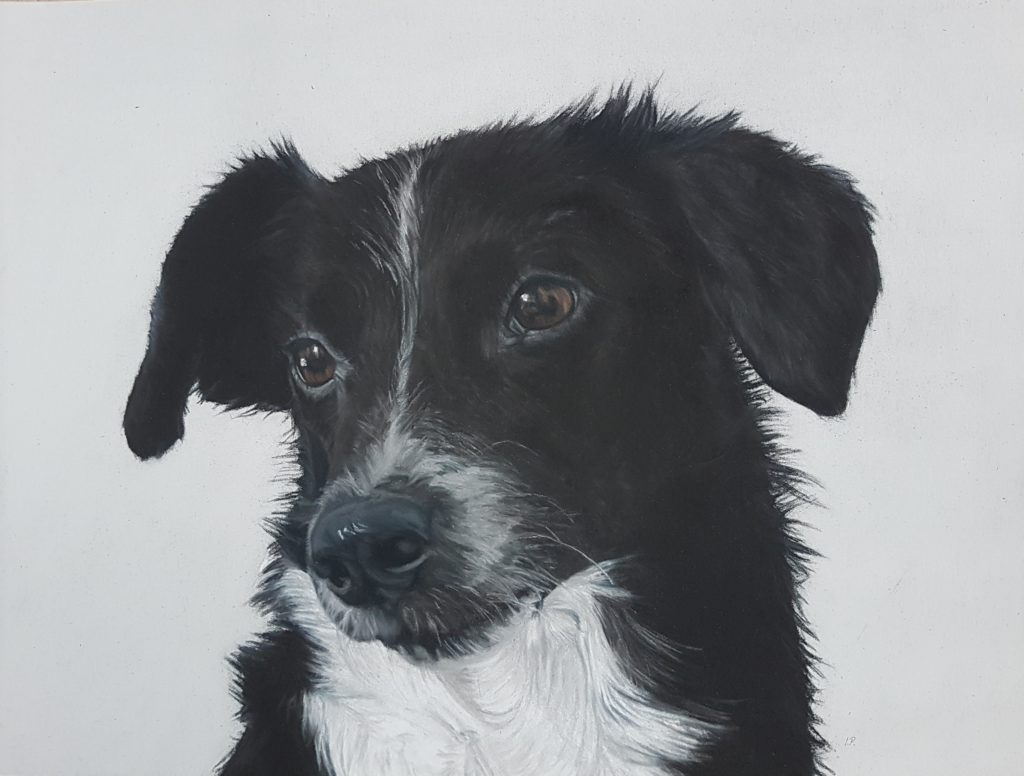 Tierportrait, Portrait, Inga Prasse