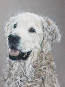 Portrait, Hund, Inga Prasse